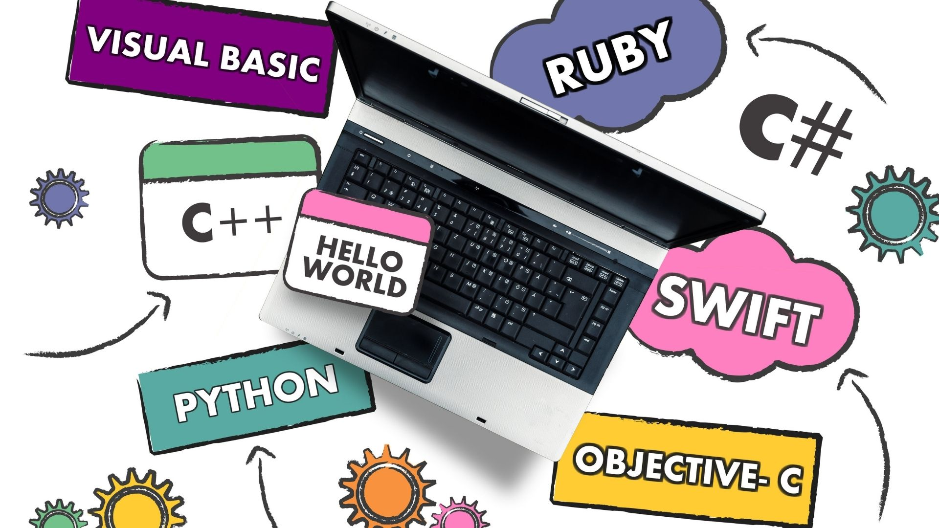 Best Online Programming Courses For Students